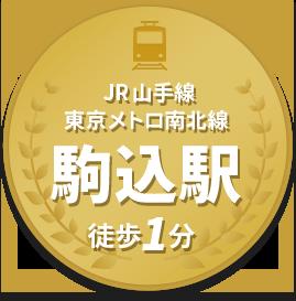 JR山手線 東京メトロ南北線 駒込駅 徒歩1分